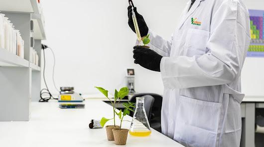 Vellsam Materias Bioactivas cierra el año 2020 con nuevas instalaciones
