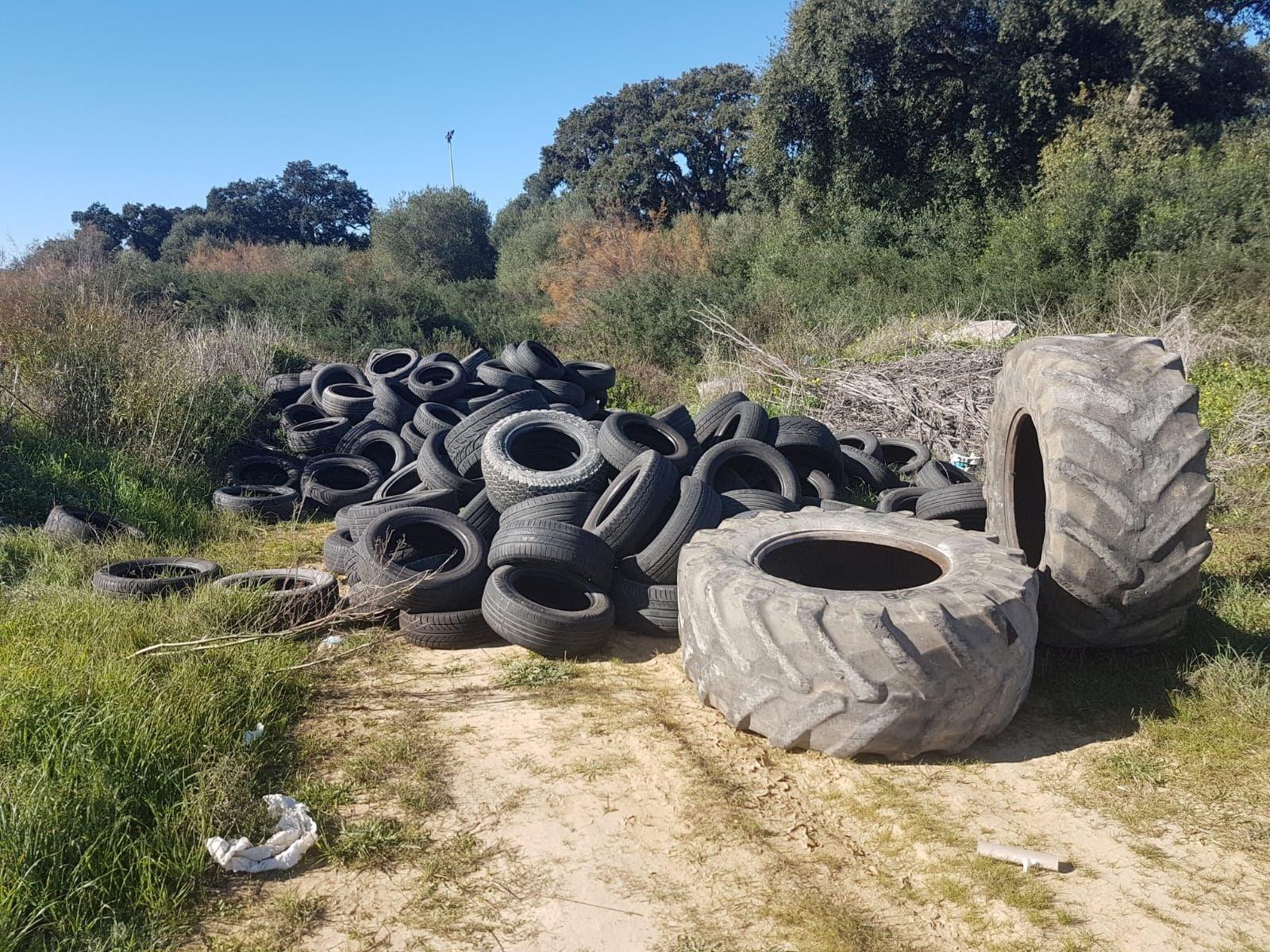 Verdemar denuncia la gran cantidad de neumáticos en el Cerro del Prado en Guadarranque
