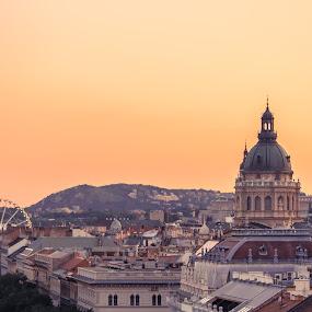 Budapest Skyline by Mo Kazemi - Buildings & Architecture Public & Historical ( budapest hungary, ferris wheel, city, basilica, cityscape, budapest, europe, landscape, hungary,  )