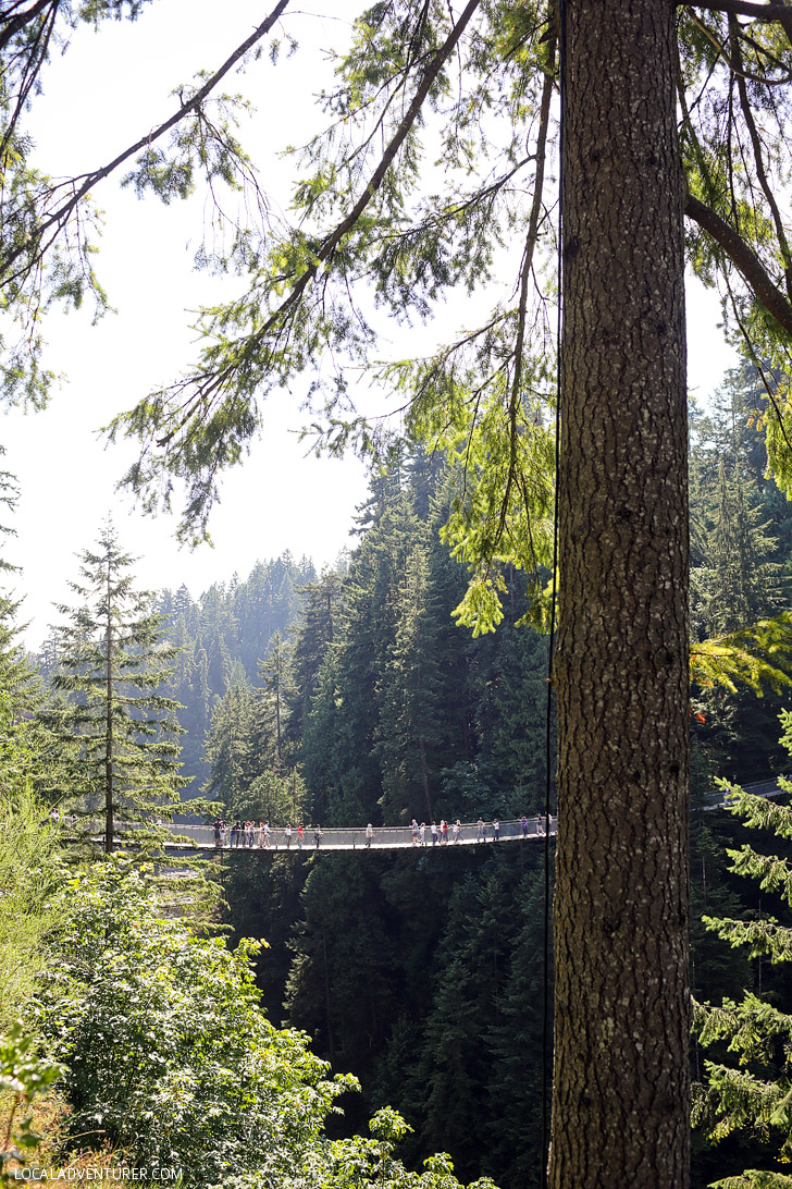Capilano Suspension Bridge Vancouver.