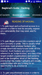 Beginner's Guide : Hacking - náhled