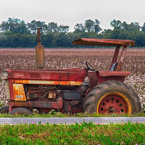 Old Tractor by Grady  Welch - Transportation Other ( red, vibrant, green, old, tractor, cotton )