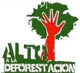 Alto a la Deforestacion.jpg