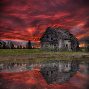 Vine House Puddle by Eric Demattos - Buildings & Architecture Decaying & Abandoned ( reflection, sunset, cottage, eric demattos, puddle, sunrise, frozen )