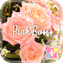 icon & wallpaper-Pink Roses- icon