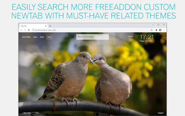 Pigeon Wallpaper HD Pigeons New Tab