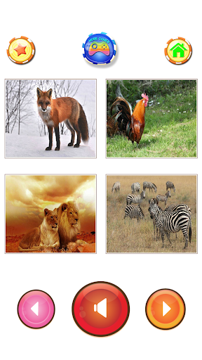 Animal sounds 6.9 screenshots 8