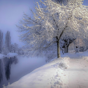 WINTER TIME by Jasminka  Tomasevic - City,  Street & Park  City Parks (  )