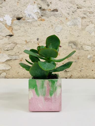 pot à plante en béton