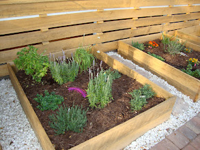 Photo: Vegetable and herb gardens