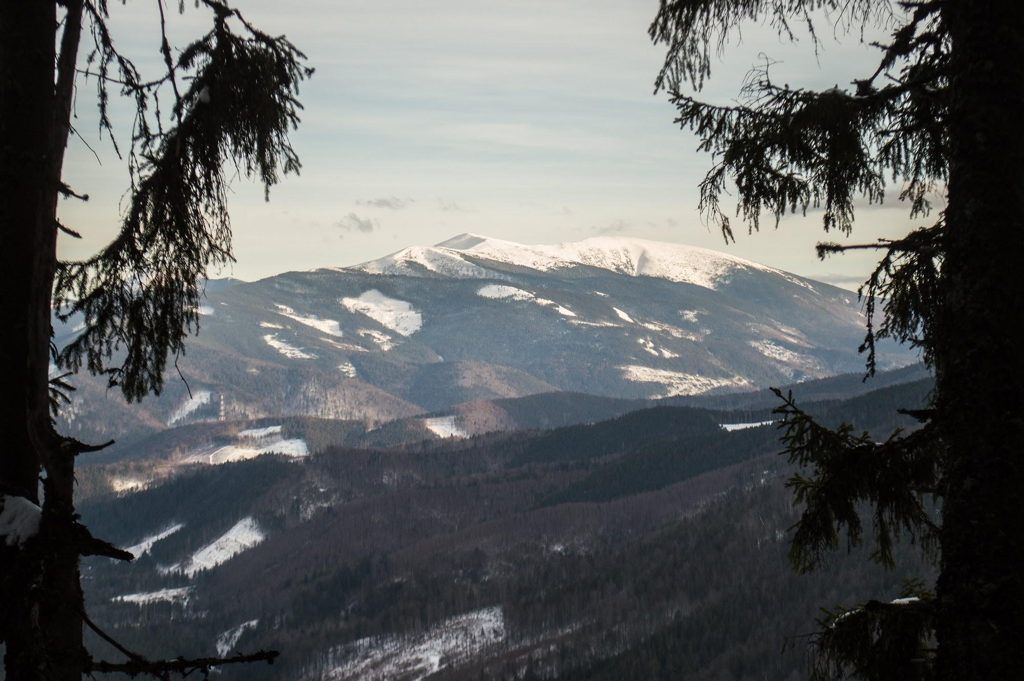 панорама зимових Горган