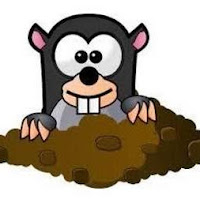 Mole Removal Service In East & West Sussex