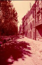 Photo: France