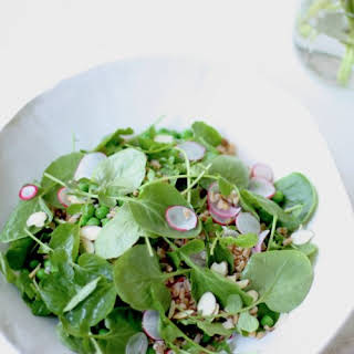 Radish Salad Dressing Recipes.