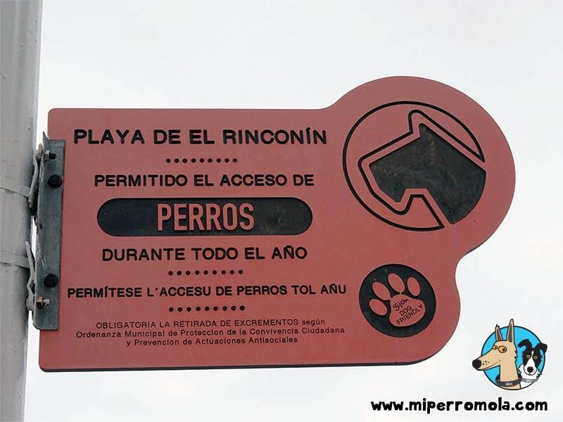 El Rinconín: La Playa Canina de Gijón