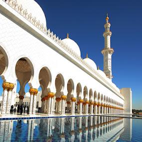 Abu Dhabi Grand Mosque by AJ VILLAMAYOR - Landscapes Travel ( abu dhabi grand mosque )