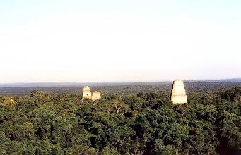 Photo: Tical, widok ze szczytu świątyni / View from the temple's top