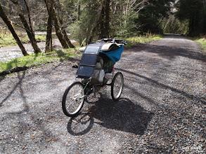 Photo: Hitting sweet forest roads through the Coastal Range