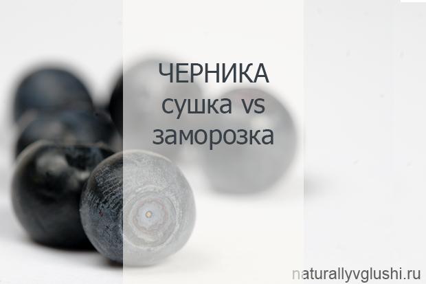 как заморозить и засушить чернику | Блог Naturally в глуши