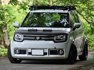 イグニス  MZ 4WDのカスタム事例画像 ぴろさんの2021年05月30日23:14の投稿