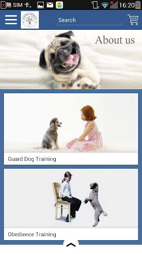 K9 Professional Dog Services