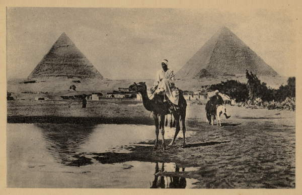 Image of The Pyramids of Giza, Egypt (b/w photo), English Photographer, (20th century) / English, Private Collection, © Look and Learn / Elgar Collection / Bridgeman Images