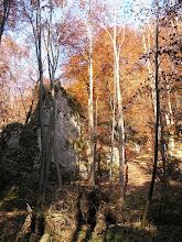 Photo: BB040367 Ojcow - kolory jesieni