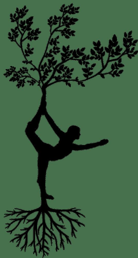 yoga+asana