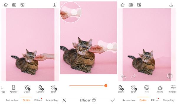 Comment faire une retouche spéciale minou pour la Journée des Chats