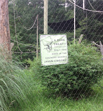 Photo: only two zoos have Javan Gibbons