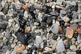 Photo: Casperson Beach, Venice, Florida MM-1534-a-2016-01-13