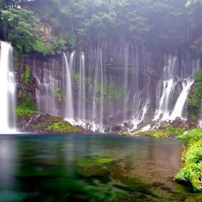Shiraito Falls by Christopher Harriot - Landscapes Waterscapes ( inland, water, japan, waterfall, shiraito falls )