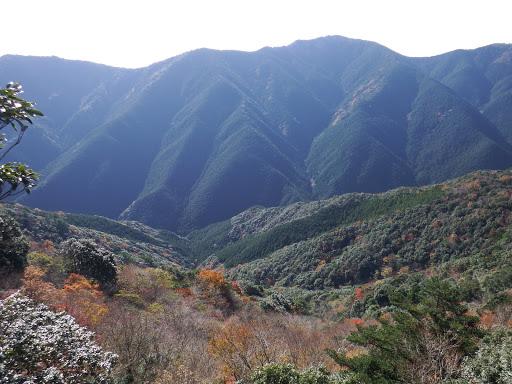 岩場から望む1(太平谷の高など)
