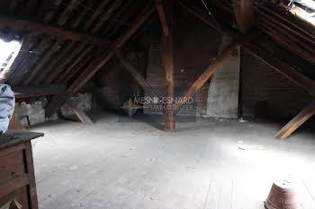 Studio 58 m2