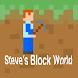Steve's Block World