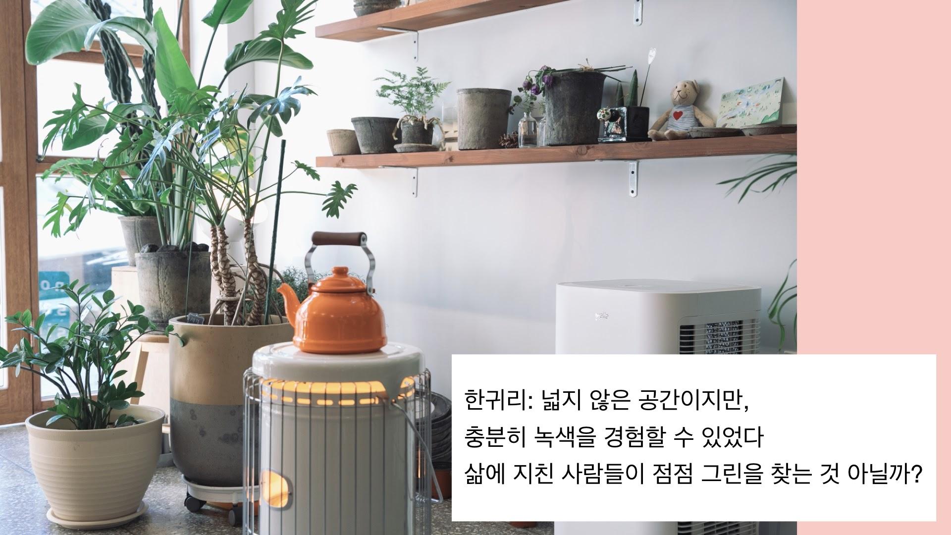 녹색시간 춘천