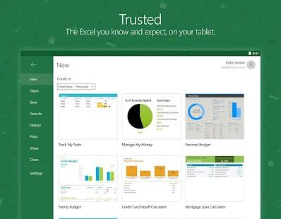 Microsoft Excel Screenshot 12