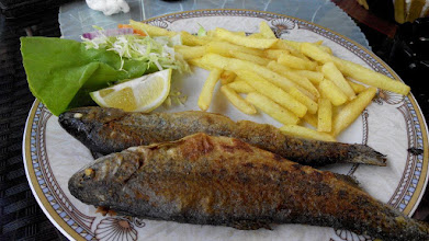 Photo: Trout lunch at Travnik