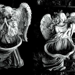 pixoto angels375blk wht.jpg