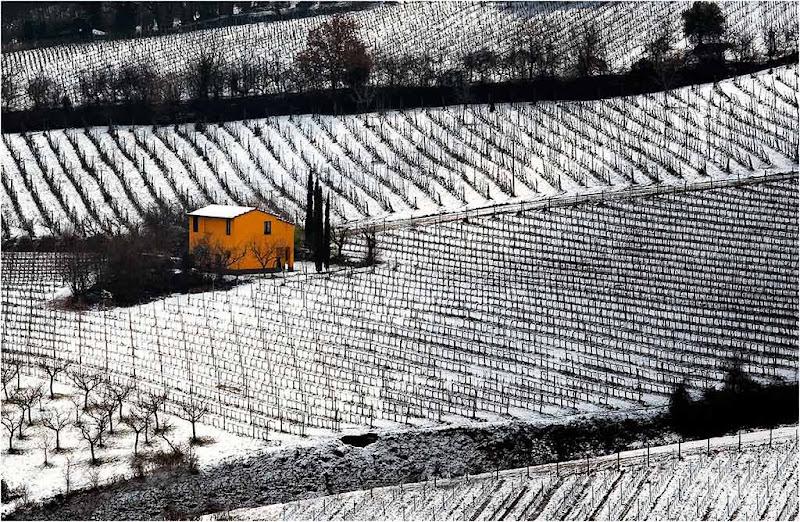 Winter in Chianti di Marco Tomei
