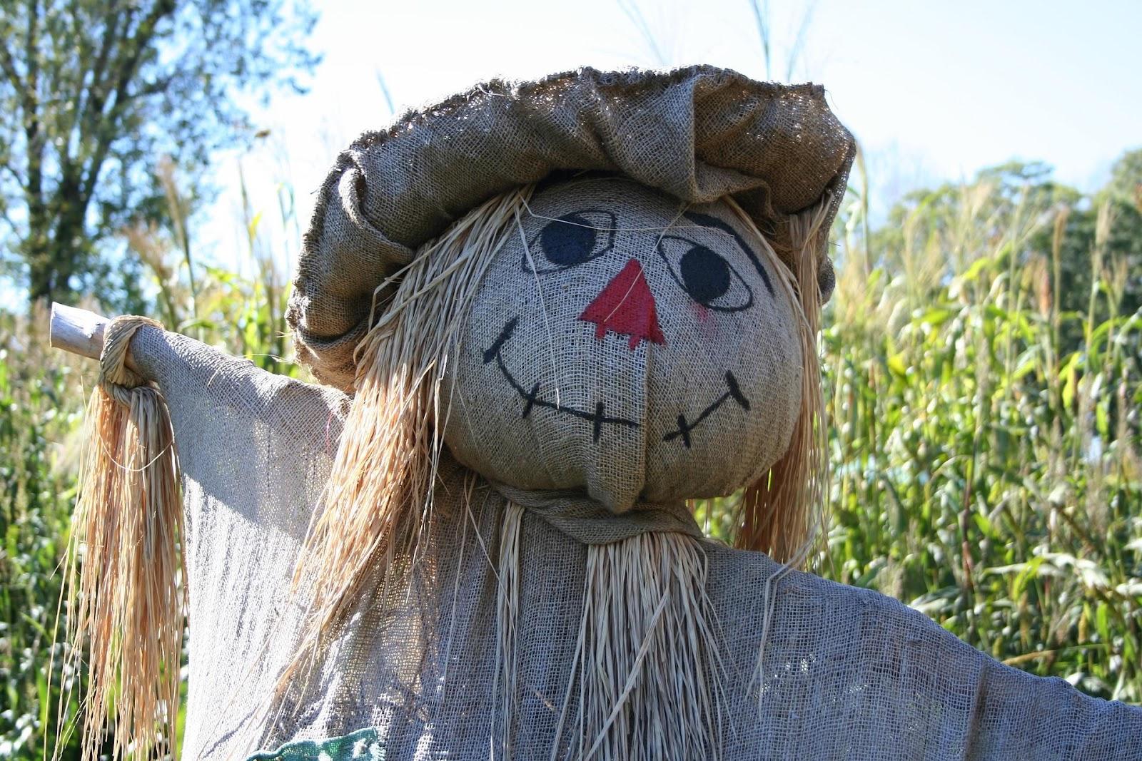 scarecrow-1714851_1920.jpg