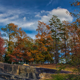 Fall on the Flat Rocks by Thomas Vasas - Landscapes Caves & Formations ( seasons, fall, scenics, travel, landscapes )