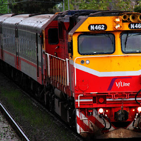 N462 comuter inbound by Ned Kelly - Transportation Trains ( diesel, comuter, railway, train, transportation,  )