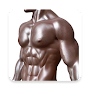 Fitness Zone : Build The Ideal Body APK icon