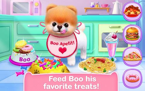 Boo – The World's Cutest Dog 12