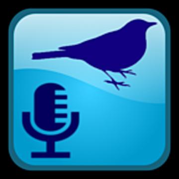 BirdUp Logo
