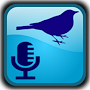 BirdUp - birdsong recognition APK icon