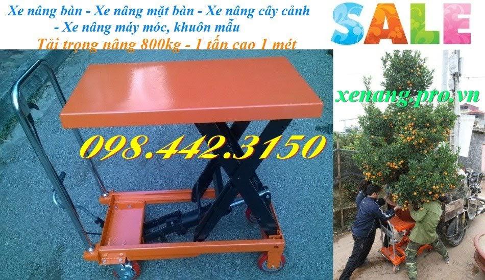 Xe nâng bàn 800kg - 1 tấn nâng cao 1 mét