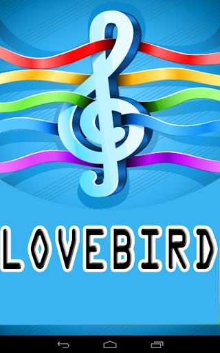 Master Kicau Lovebird Ngekek