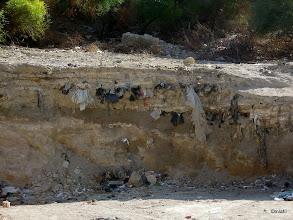 Photo: Lekce geologie: sedimenty